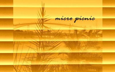 micro picnic am 17. August 16 – 22 Uhr